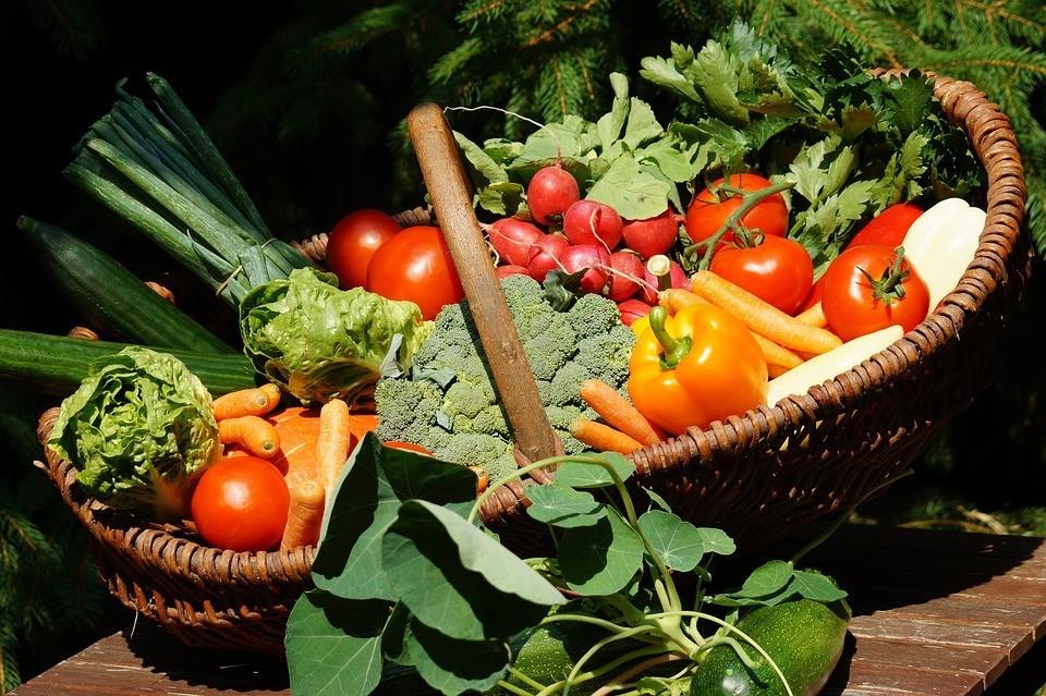 интер овощи таксономия для компании